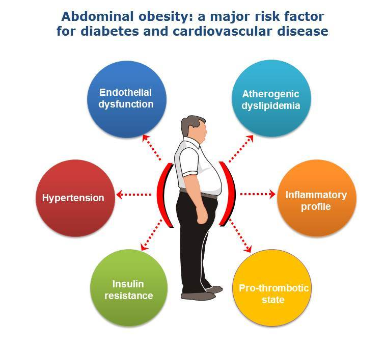 type ii diabetes obesity Related journals of type 2 diabetes journal of diabetes & metabolism muscle fat content is increased in obesity and more so in type 2 diabetes.
