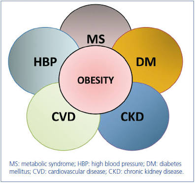 Diseases Associated With Obesity Excellent Slimming And Health At Our Centre Or Your Home Anywhere In The World