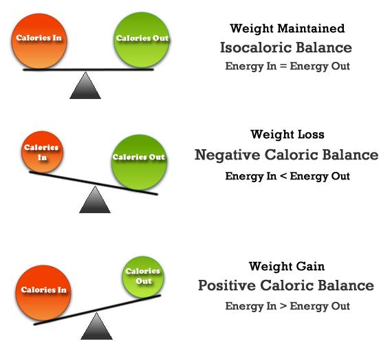 mechanism of weight