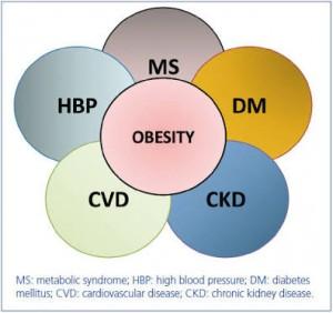 Dangers Of Obesity